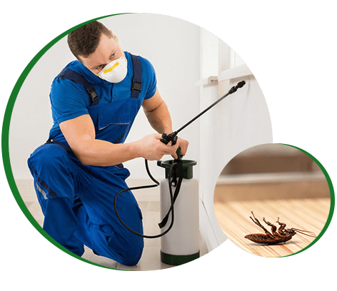 Nature-Rite Pest Management, Inc.